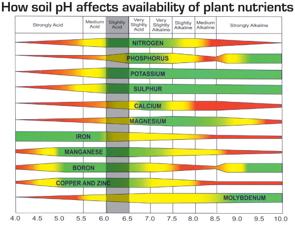Correct soil pH is essential for productive soil.